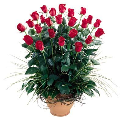 Bursa çiçekçi mağazası  10 adet kirmizi gül cam yada mika vazo