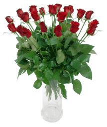 Bursa kaliteli taze ve ucuz çiçekler  11 adet kimizi gülün ihtisami cam yada mika vazo modeli
