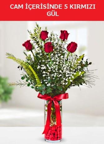 Cam içerisinde 5 adet kırmızı gül  Bursa çiçek gönderme sitemiz güvenlidir