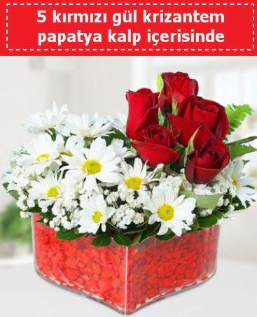 mika kalp içerisinde 5 kırmızı gül papatya  Bursa çiçek mağazası , çiçekçi adresleri