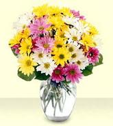 Bursa çiçekçi telefonları  mevsim çiçekleri mika yada cam vazo