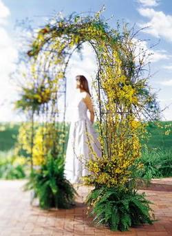 Bursa çiçek yolla  güller ve mevsim çiçegi