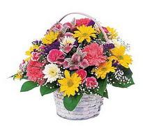 Bursa yurtiçi ve yurtdışı çiçek siparişi  mevsim çiçekleri sepeti özel