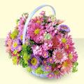 Bursa uluslararası çiçek gönderme  bir sepet dolusu kir çiçegi  Bursa çiçek online çiçek siparişi