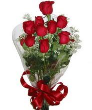 9 adet kaliteli kirmizi gül   Bursa 14 şubat sevgililer günü çiçek