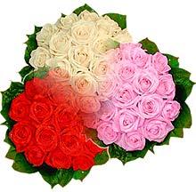 3 renkte gül seven sever   Bursa yurtiçi ve yurtdışı çiçek siparişi