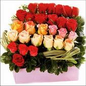 15 adet renkli gül ve cam   Bursa İnternetten çiçek siparişi