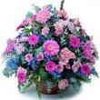 karisik mevsim kir çiçekleri  Bursa çiçek online çiçek siparişi
