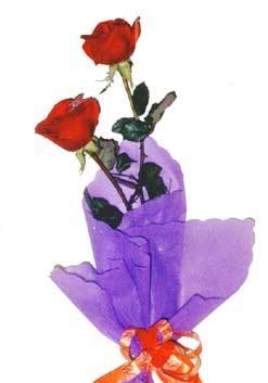 2  adet kirmizi gül buketi   Bursa yurtiçi ve yurtdışı çiçek siparişi