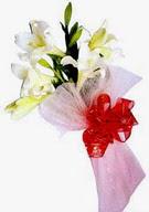 Bursa yurtiçi ve yurtdışı çiçek siparişi  ince vazoda gerbera ve ayi