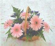 gerbera çiçeklerinde sepet   Bursa çiçek servisi , çiçekçi adresleri