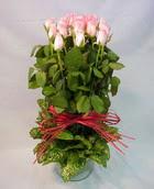 13 adet pembe gül silindirde   Bursa çiçek servisi , çiçekçi adresleri