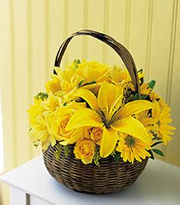 sepet içerisinde sarinin sihri  Bursa hediye çiçek yolla