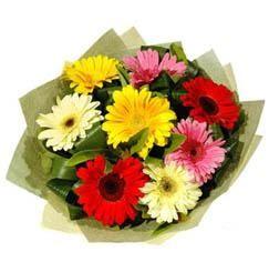 9 adet karisik gerbera demeti  Bursa online çiçek gönderme sipariş