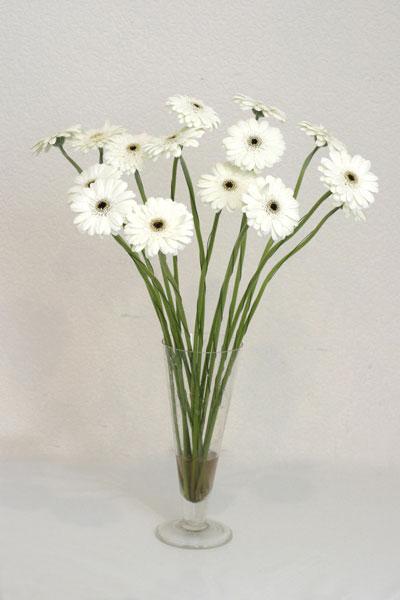 Bursa online çiçek gönderme sipariş  cam vazo içerisinde 17 adet sade gerbera