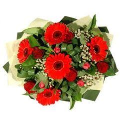 Bursa online çiçekçi , çiçek siparişi   5 adet kirmizi gül 5 adet gerbera demeti
