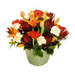 mevsim çiçeklerinden karma aranjman  Bursa anneler günü çiçek yolla
