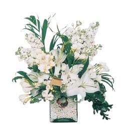 Bursa çiçekçi telefonları  sadece beyazlardan olusmus mevsim cam yada mika tanzim