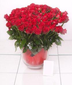 Bursa ucuz çiçek gönder  101 adet kirmizi gül