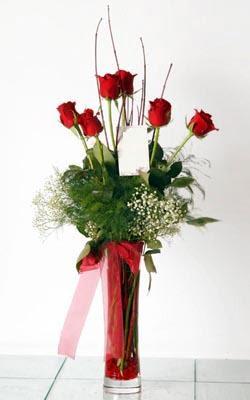 Bursa hediye çiçek yolla  6 adet kirmizi gül ve cam yada mika vazo