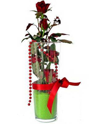Bursa çiçek , çiçekçi , çiçekçilik  Cam yada mika içerisinde 9 adet kirmizi gül - sevdiklerinize özel
