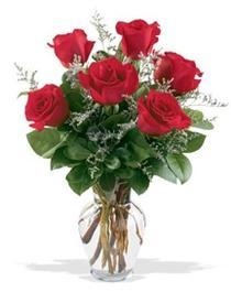 Bursa çiçek online çiçek siparişi  7 adet kirmizi gül cam yada mika vazoda sevenlere