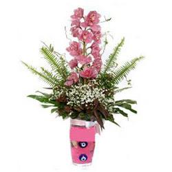 Bursa çiçek yolla , çiçek gönder , çiçekçi   cam yada mika vazo içerisinde tek dal orkide çiçegi