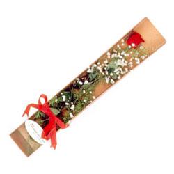 Bursa yurtiçi ve yurtdışı çiçek siparişi  Kutuda tek 1 adet kirmizi gül çiçegi