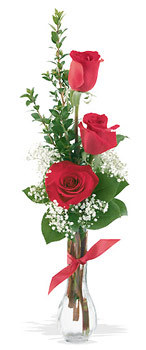 Bursa hediye çiçek yolla  mika yada cam vazoda 3 adet kirmizi gül