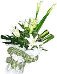 Bursa cicekciler , cicek siparisi  3 dal kazablanka çiçegi ve yesillikler