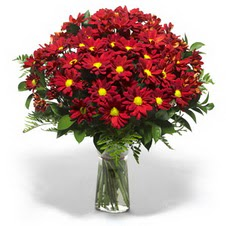 Bursa çiçek servisi , çiçekçi adresleri  Kir çiçekleri cam yada mika vazo içinde