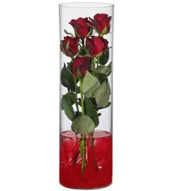 cam içerisinde 7 adet kirmizi gül  Bursa çiçek gönderme