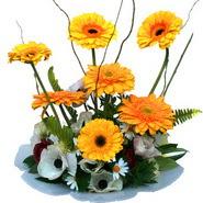 camda gerbera ve mis kokulu kir çiçekleri  Bursa kaliteli taze ve ucuz çiçekler