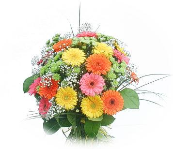 13 adet gerbera çiçegi buketi  Bursa çiçek , çiçekçi , çiçekçilik