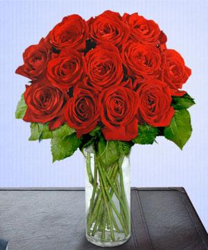 Anneme 12 adet cam içerisinde kirmizi gül  Bursa çiçek gönderme sitemiz güvenlidir