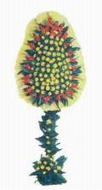Bursa çiçek servisi , çiçekçi adresleri  dügün açilis çiçekleri  Bursa çiçek , çiçekçi , çiçekçilik