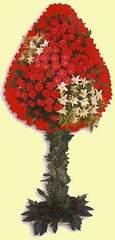 Bursa çiçek mağazası , çiçekçi adresleri  dügün açilis çiçekleri  Bursa internetten çiçek siparişi