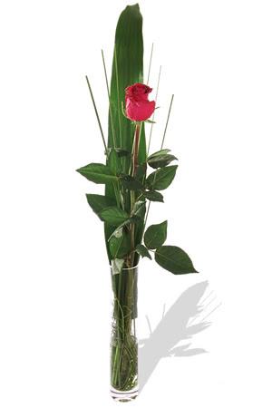 1 adet cam vazo içerisinde kirmizi gül  Bursa yurtiçi ve yurtdışı çiçek siparişi