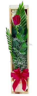 Sade ve gösterisli kutu içerisinde tek gül  Bursa İnternetten çiçek siparişi