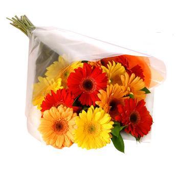 Karisik renklerde gerbera buketi  Bursa hediye çiçek yolla