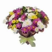 Bursa kaliteli taze ve ucuz çiçekler  Mevsim kir çiçegi demeti