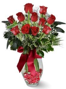 9 adet gül  Bursa çiçek yolla  kirmizi gül