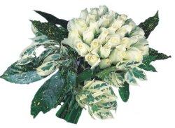 Bursa çiçekçi telefonları  9 Beyaz gül Özel kisiler için