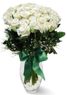 19 adet essiz kalitede beyaz gül  Bursa çiçek gönderme