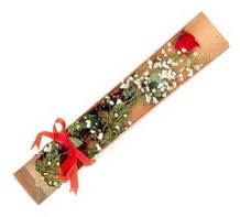 1 adet kirmizi gül  Bursa kaliteli taze ve ucuz çiçekler