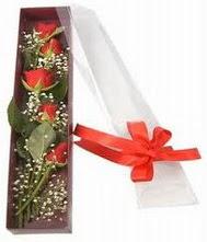 kutu içinde 5 adet kirmizi gül  Bursa çiçekçi telefonları