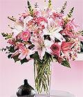 Bursa anneler günü çiçek yolla  Kazablanka biçme vazoda