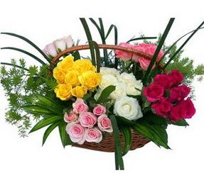 Bursa online çiçekçi , çiçek siparişi  35 adet rengarenk güllerden sepet tanzimi