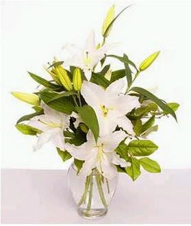 Bursa çiçek mağazası , çiçekçi adresleri  2 dal cazablanca vazo çiçeği
