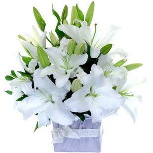 Bursa çiçek servisi , çiçekçi adresleri  2 dal cazablanca vazo çiçeği